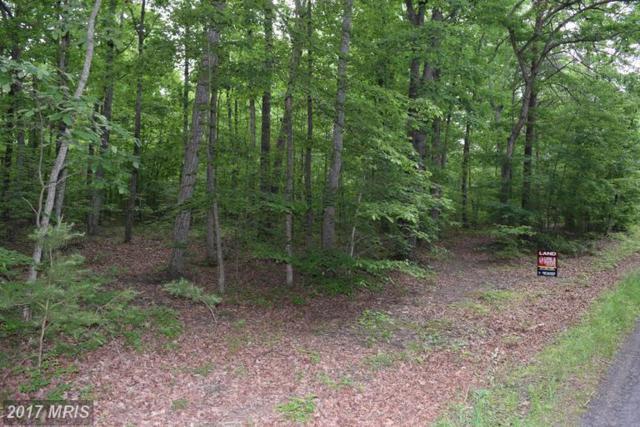 Hetfield Drive, Unionville, VA 22567 (#OR9960375) :: Pearson Smith Realty