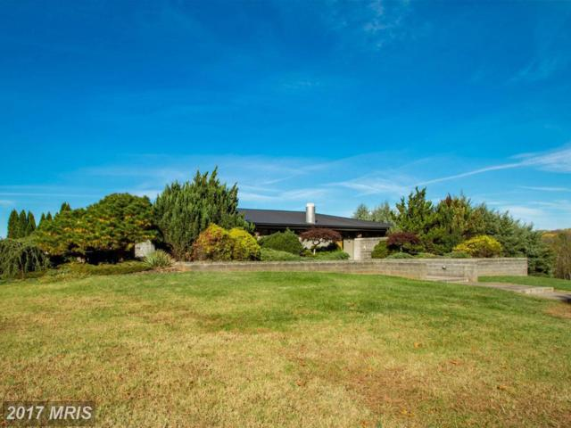 12242-A Greenwood Road, Orange, VA 22960 (#OR9988884) :: Coldwell Banker Elite