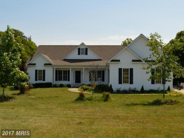 26583 Pennfields Drive, Orange, VA 22960 (#OR9992596) :: Pearson Smith Realty