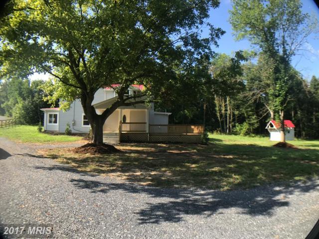 1442 Ganders Drive, Luray, VA 22835 (#PA10006760) :: Pearson Smith Realty