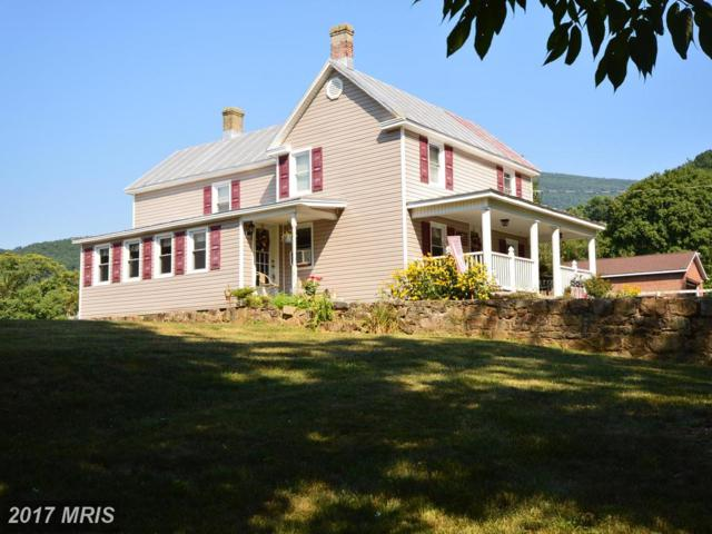 3609 Pine Grove Road, Stanley, VA 22851 (#PA10010154) :: Pearson Smith Realty