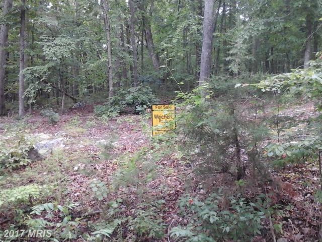 0 Cross Creek Ext, Luray, VA 22835 (#PA10012845) :: Pearson Smith Realty