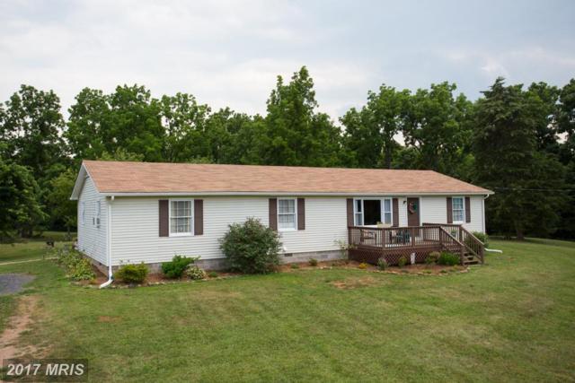 383 Parkview Estates Road, Luray, VA 22835 (#PA10020983) :: LoCoMusings