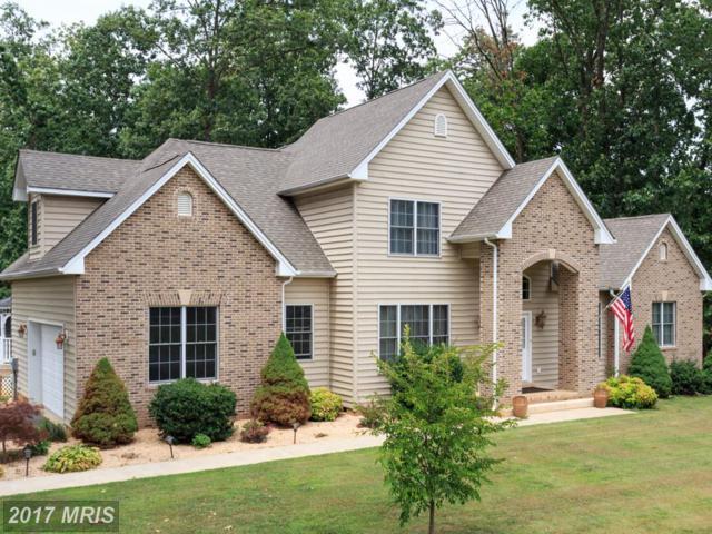 157 Circle View Road, Luray, VA 22835 (#PA10020992) :: Pearson Smith Realty