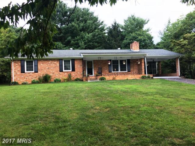 3080 Pine Grove Road, Stanley, VA 22851 (#PA10026908) :: Pearson Smith Realty