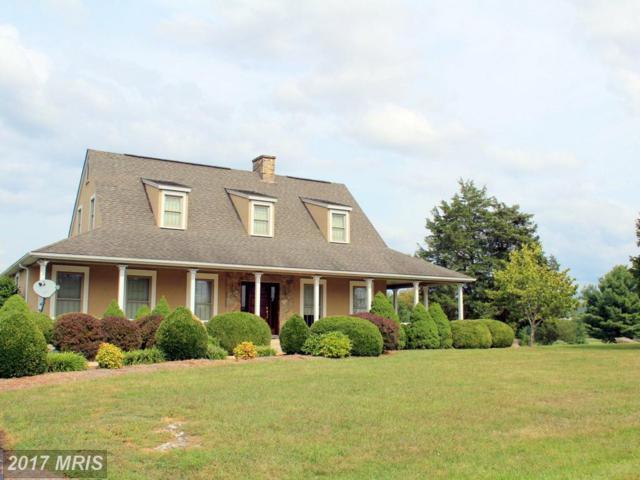 480 Beall Avenue, Luray, VA 22835 (#PA10043542) :: Pearson Smith Realty