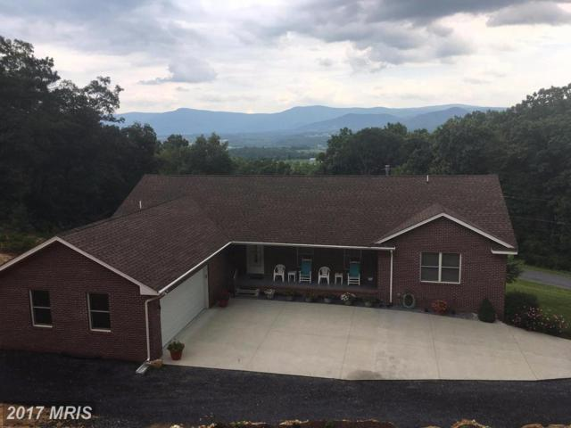 511 Panorama View Drive, Stanley, VA 22851 (#PA10047574) :: Pearson Smith Realty