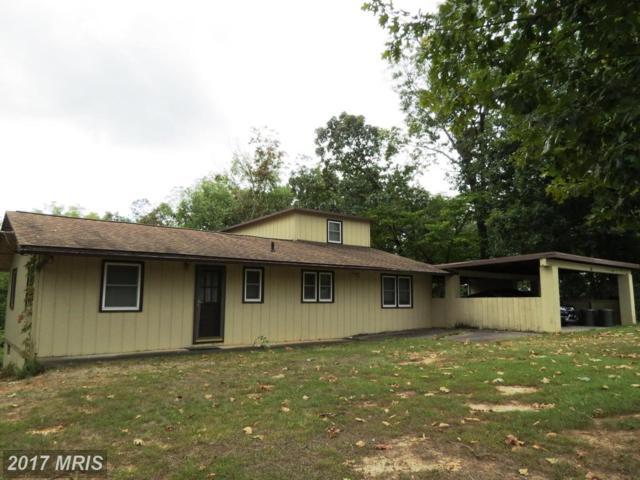 328 Riverbend Drive, Luray, VA 22835 (#PA10059212) :: LoCoMusings