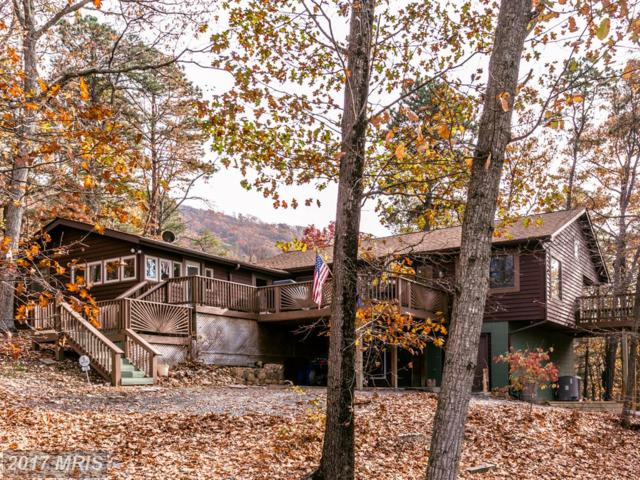 225 Buzzard View Place, Shenandoah, VA 22849 (#PA10107393) :: Pearson Smith Realty