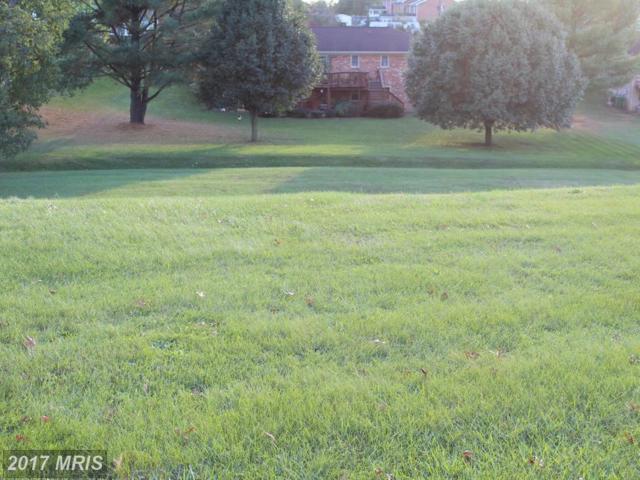 Oakcrest Drive, Luray, VA 22835 (#PA10108436) :: Pearson Smith Realty