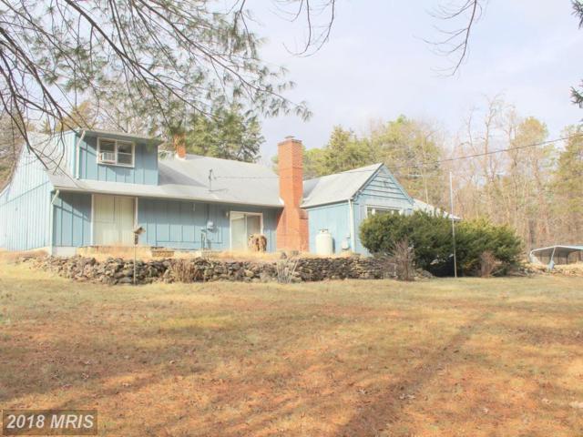 158 Herdman Hill Road, Luray, VA 22835 (#PA10134462) :: Pearson Smith Realty