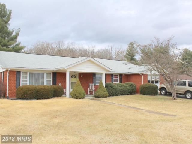 44 Greenfield Road, Luray, VA 22835 (#PA10135393) :: The Gus Anthony Team