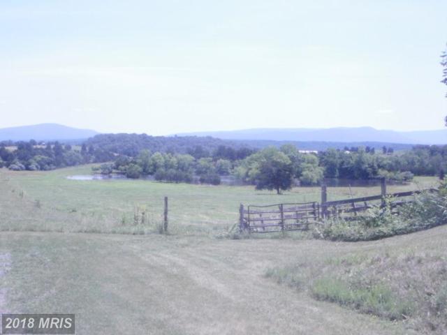 287 Pollock Road, Luray, VA 22835 (#PA10139669) :: Pearson Smith Realty