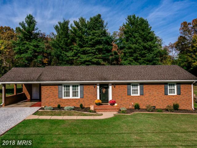 40 Greenfield Road, Luray, VA 22835 (#PA10147071) :: The Gus Anthony Team