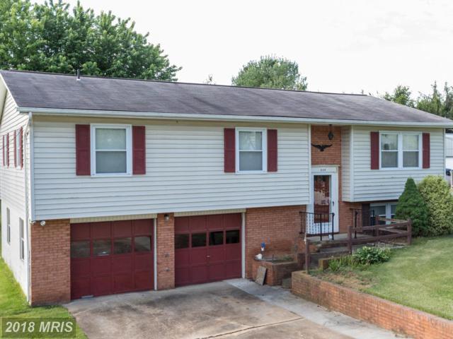 808 Osceola Avenue, Shenandoah, VA 22849 (#PA10278905) :: The Gus Anthony Team