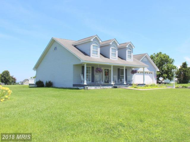 1066 Honeyville Road, Stanley, VA 22851 (#PA10286867) :: Bob Lucido Team of Keller Williams Integrity