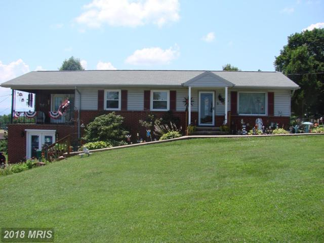 9 Woodland Park Drive, Luray, VA 22835 (#PA10289757) :: Bob Lucido Team of Keller Williams Integrity