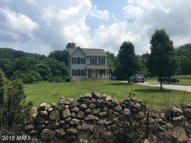 987 Kite Hollow Road, Stanley, VA 22851 (#PA10291247) :: Keller Williams Pat Hiban Real Estate Group