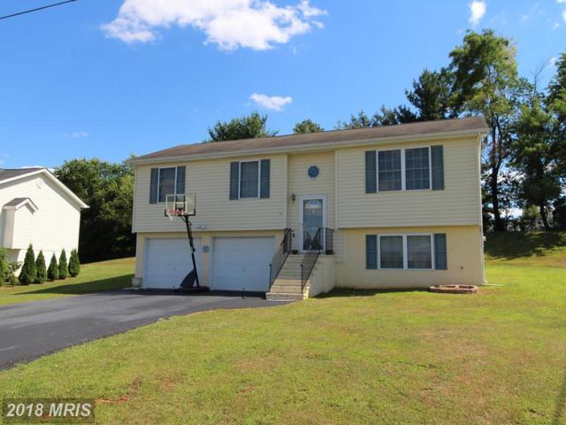 165 High Knoll Terrace, Shenandoah, VA 22849 (#PA10303863) :: Eric Stewart Group
