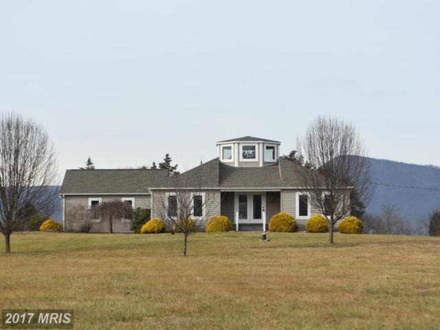 1050 Parkview Estates Road, Luray, VA 22835 (#PA9760444) :: LoCoMusings