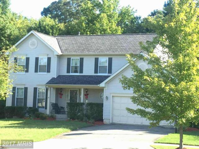 7109 Sequoia Terrace, Beltsville, MD 20705 (#PG10012531) :: Pearson Smith Realty