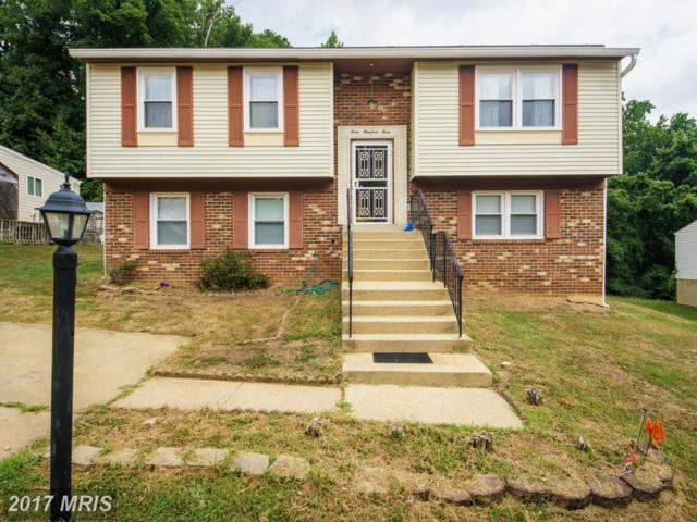 303 Aqua Lynn Drive, Fort Washington, MD 20744 (#PG10018262) :: LoCoMusings