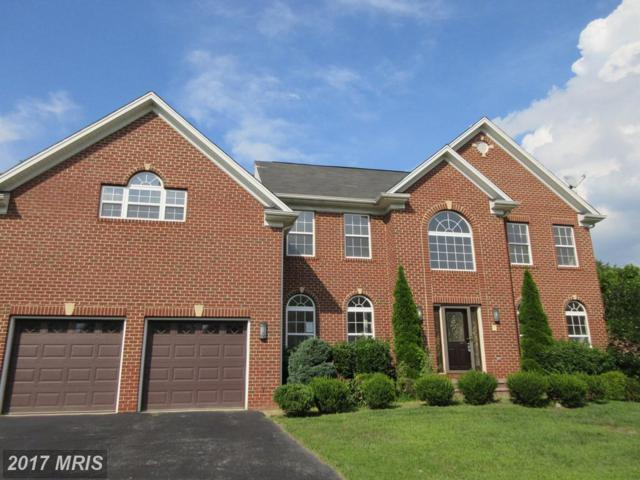 17208 Britfield Court, Accokeek, MD 20607 (#PG10024364) :: Pearson Smith Realty