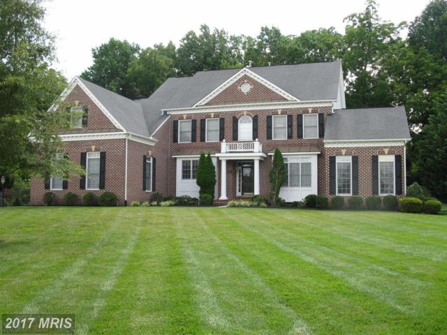 13107 Big Cedar Lane, Bowie, MD 20720 (#PG10024491) :: Pearson Smith Realty