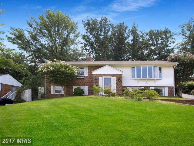 13113 Oriole Drive, Beltsville, MD 20705 (#PG10028745) :: Pearson Smith Realty