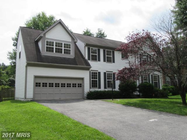 3108 Applegate Terrace, Bowie, MD 20716 (#PG10028977) :: Pearson Smith Realty