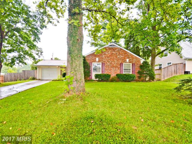 16110 Pond Meadow Lane, Bowie, MD 20716 (#PG10029819) :: Pearson Smith Realty