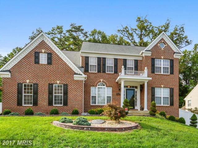 6810 Sand Cherry Way, Clinton, MD 20735 (#PG10030401) :: Pearson Smith Realty