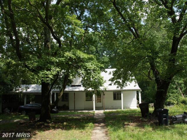 3736 Lumar Drive, Fort Washington, MD 20744 (#PG10032864) :: Pearson Smith Realty