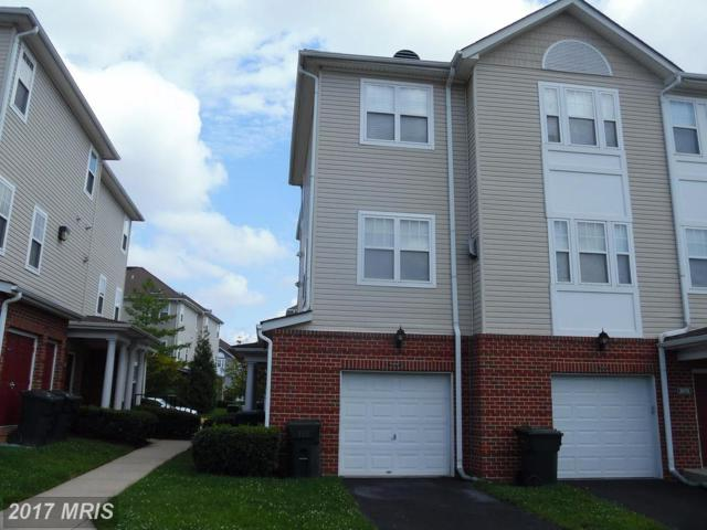 3010 Irma Court, Suitland, MD 20746 (#PG10034684) :: The Speicher Group of Long & Foster Real Estate