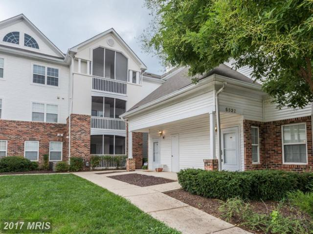 6522 Lake Park Drive #204, Greenbelt, MD 20770 (#PG10035920) :: Pearson Smith Realty