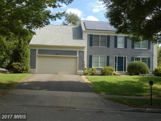 16204 Angel Falls Lane, Bowie, MD 20716 (#PG10039808) :: Pearson Smith Realty
