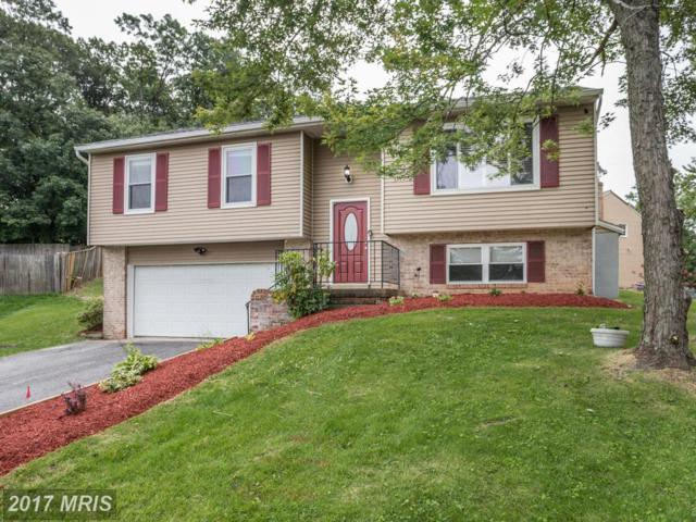5101 Wiley Street, Riverdale, MD 20737 (#PG10040722) :: Pearson Smith Realty
