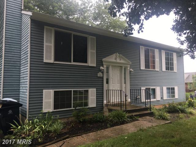12401 Lampton Lane, Fort Washington, MD 20744 (#PG10043799) :: Pearson Smith Realty