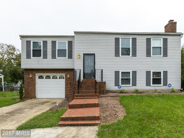 3805 Charred Oak Drive, Fort Washington, MD 20744 (#PG10050874) :: Pearson Smith Realty