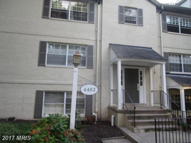 4403 Romlon Street #202, Beltsville, MD 20705 (#PG10057481) :: Pearson Smith Realty