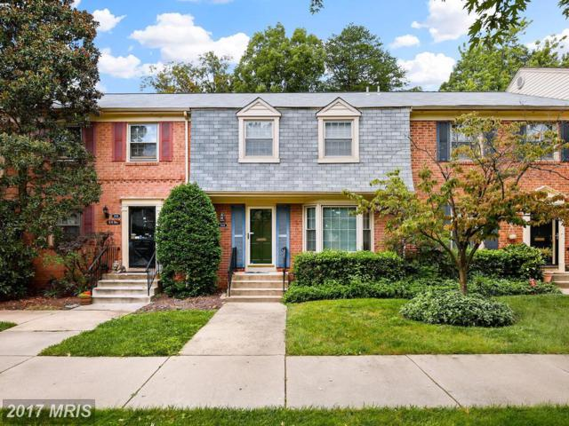 5924 Westchester Park Drive, College Park, MD 20740 (#PG10061738) :: Pearson Smith Realty