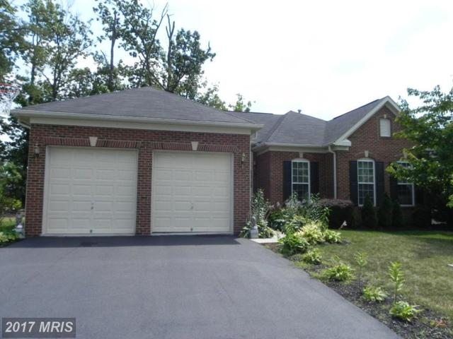 14709 Northfield Court, Laurel, MD 20707 (#PG10062574) :: Pearson Smith Realty