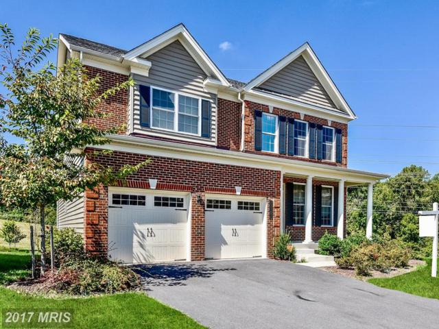 11101 Saddle Court, Upper Marlboro, MD 20772 (#PG10065668) :: ExecuHome Realty