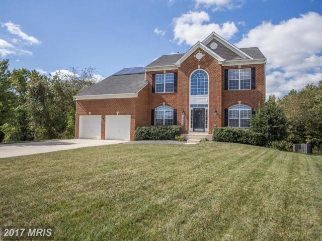 10909 Hackberry Court, Clinton, MD 20735 (#PG10074076) :: LoCoMusings