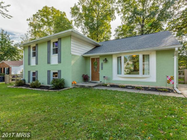 16101 Jerald Road, Laurel, MD 20707 (#PG10084932) :: The Sebeck Team of RE/MAX Preferred