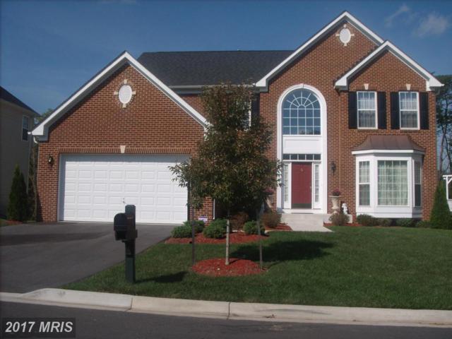 12906 Ledo Creek Terrace, Beltsville, MD 20705 (#PG10102469) :: Pearson Smith Realty