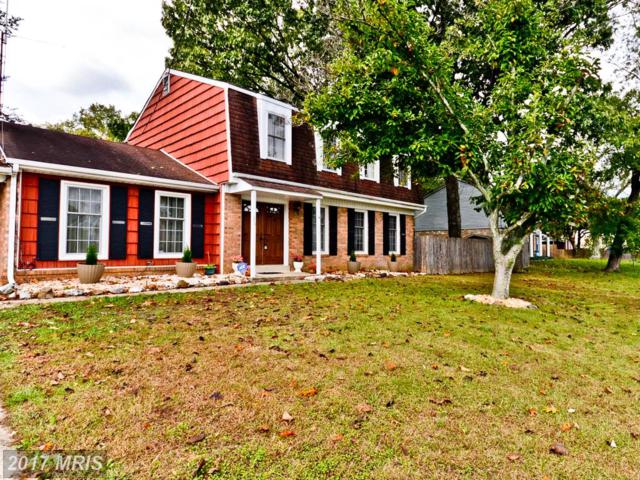 9401 Pine View Lane, Clinton, MD 20735 (#PG10107803) :: Blackwell Real Estate