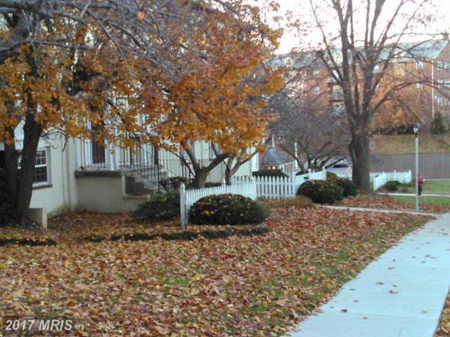 4503 Romlon Street #203, Beltsville, MD 20705 (#PG10111865) :: Pearson Smith Realty