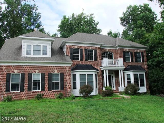 14304 Driftwood Road, Bowie, MD 20721 (#PG10113629) :: Pearson Smith Realty
