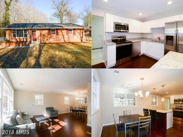 5910 Walton Avenue, Suitland, MD 20746 (#PG10135141) :: Blackwell Real Estate